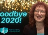 Goodbye to 2020 by Karen Sussman